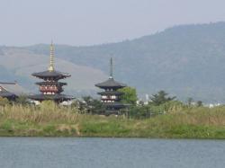 大池より薬師寺を望む 光学ズームx3 デジタルズーム併用。