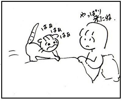 51-3.jpg