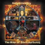 Badly Drawn Boy-The Hour Of Bewilderbeast