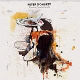 Peter Doherty-Grace Wasteland