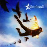 Zebrahead-Phoenix.jpg