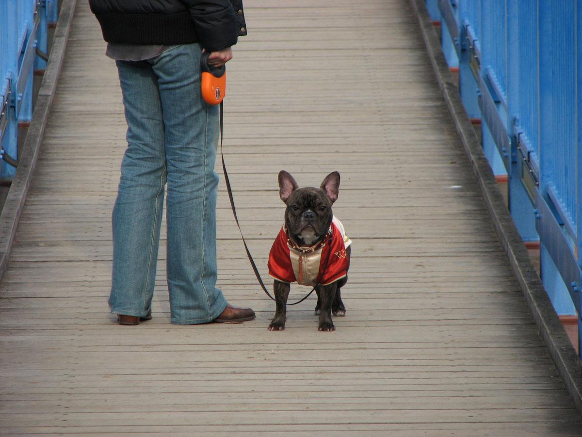 初めての吊り橋にて。パパ~早く~