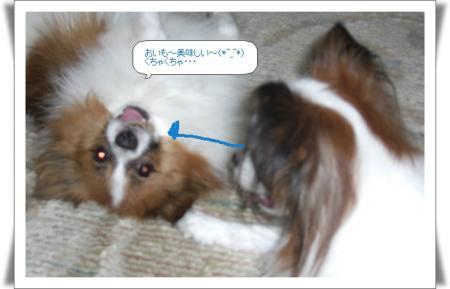 編集_image5808837