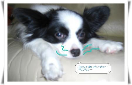 編集_image9395058