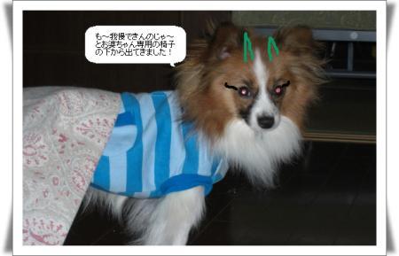 編集_image2559992