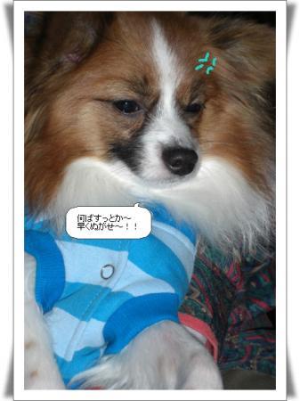 編集_image6345841