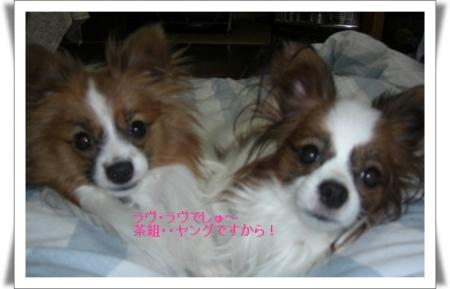 編集_image3487430