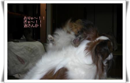 編集_image317603