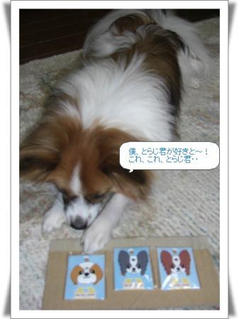 編集_image3217325