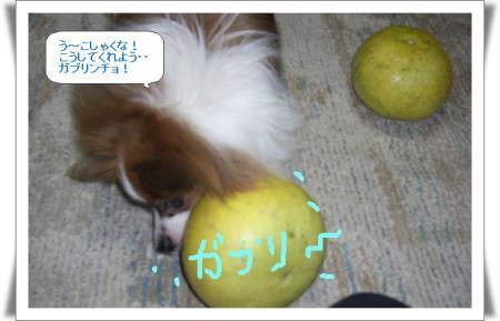 編集_image4331761