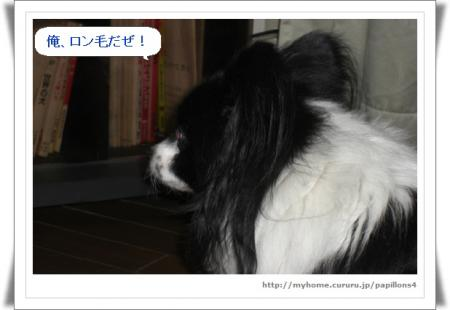編集_image6043897