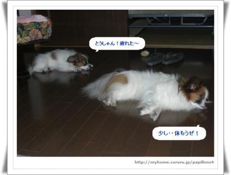編集_image4274812