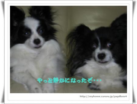 編集_image6156344