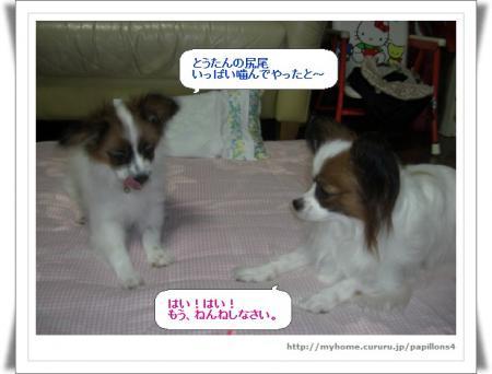 編集_image4278997