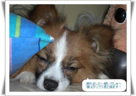編集_image7593103