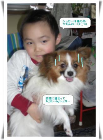 編集_image7801216