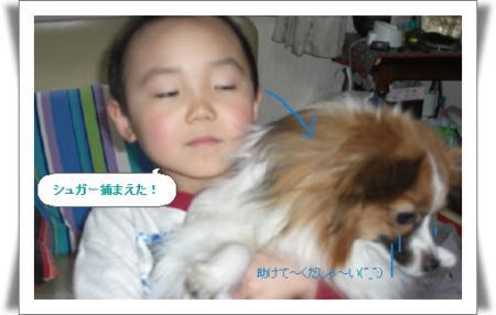 編集_image4361505