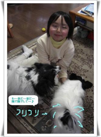 編集_image8951950