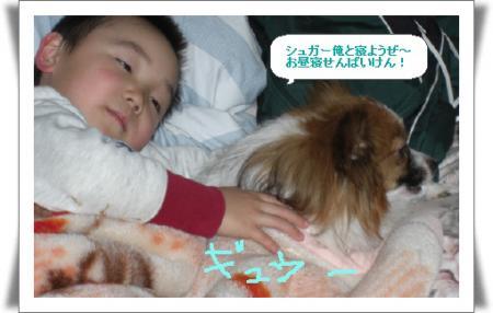 編集_image7974593