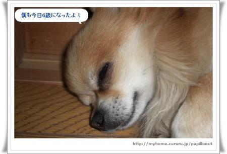 image8313992.jpg