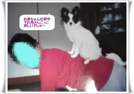 image9128181.jpg