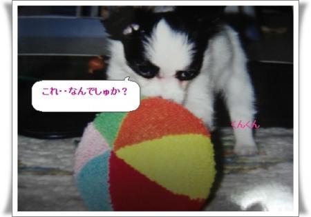 image983273.jpg
