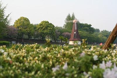 公園の風車。