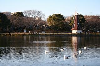 おだやかな休日の公園