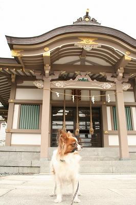 近くの神社にて・・・
