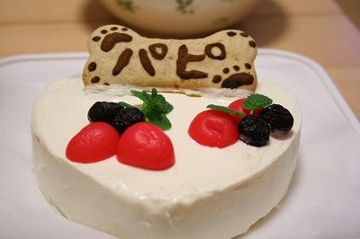 今年のケーキはコレ♪
