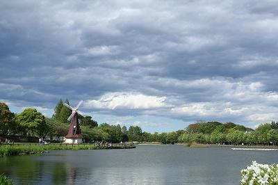 公園の空 雲が・・