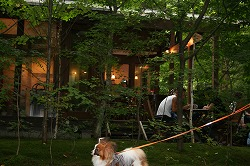 森のカフェテラス