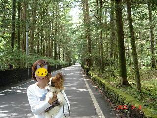 軽井沢散策2