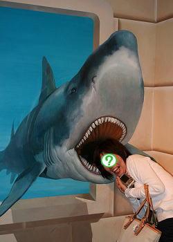サメだぁ~