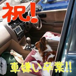 ぱぴ乗車中☆
