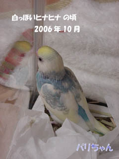 0094.jpg