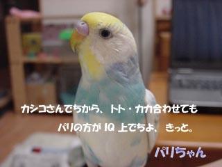 0101.jpg