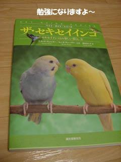 book0812.jpg