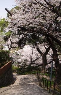 元町公園01