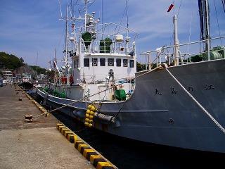 三崎漁港02