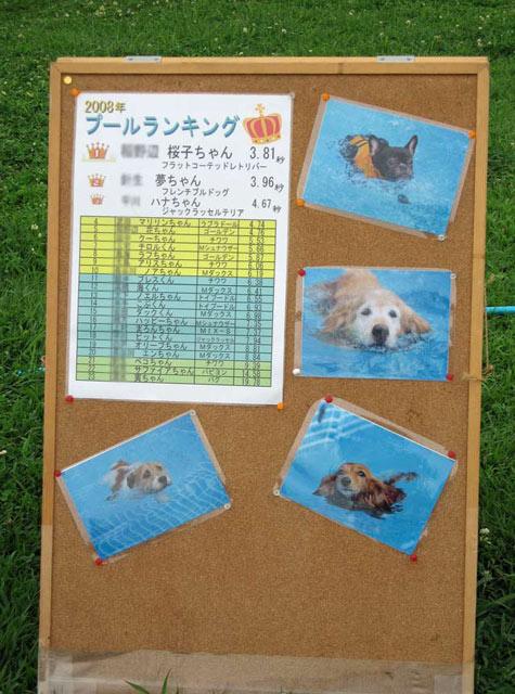 はなさき公園  (5)