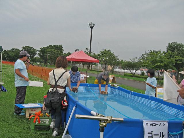 はなさき公園  (8)