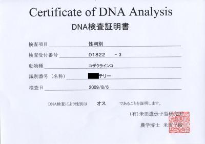 DNA検査証明書テリー