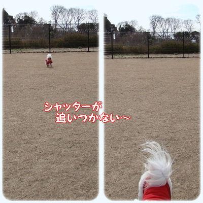 1233_20090223194353.jpg