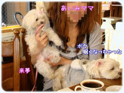 1246_20090223194650.jpg