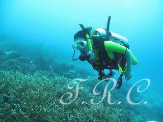 タイ ラチャヤイ島 体験ダイビング プーケット 観光