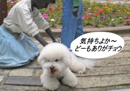 00_convert_20090601044836.jpg