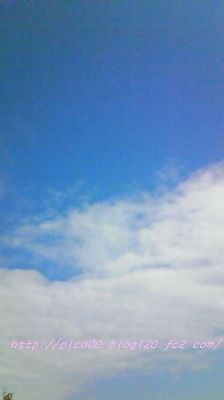 0813NEC_0711☆