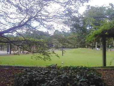 navel-park14.jpg