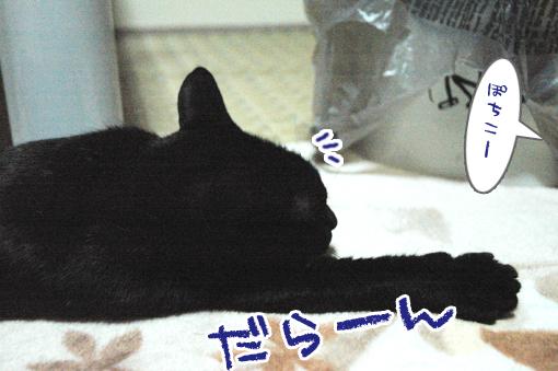 02_20090205005023.jpg